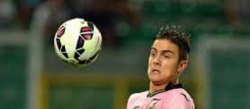 Palermo-Sassuolo, Serie A, 15^giornata