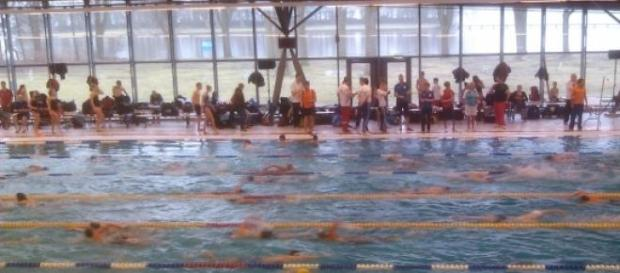 A Amsterdam Swim Cup decorre até este Domingo.