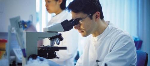 El estudio, en células de cáncer de pulmón