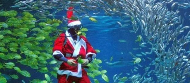 Natale 2014: Italiani quasi tutti a casa