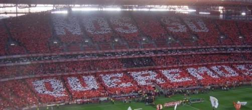 Benfica voltou às vitórias na Luz.