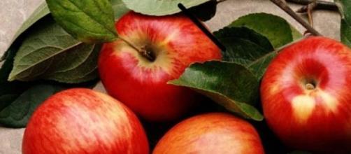 La manzana ayuda a la salud digestiva