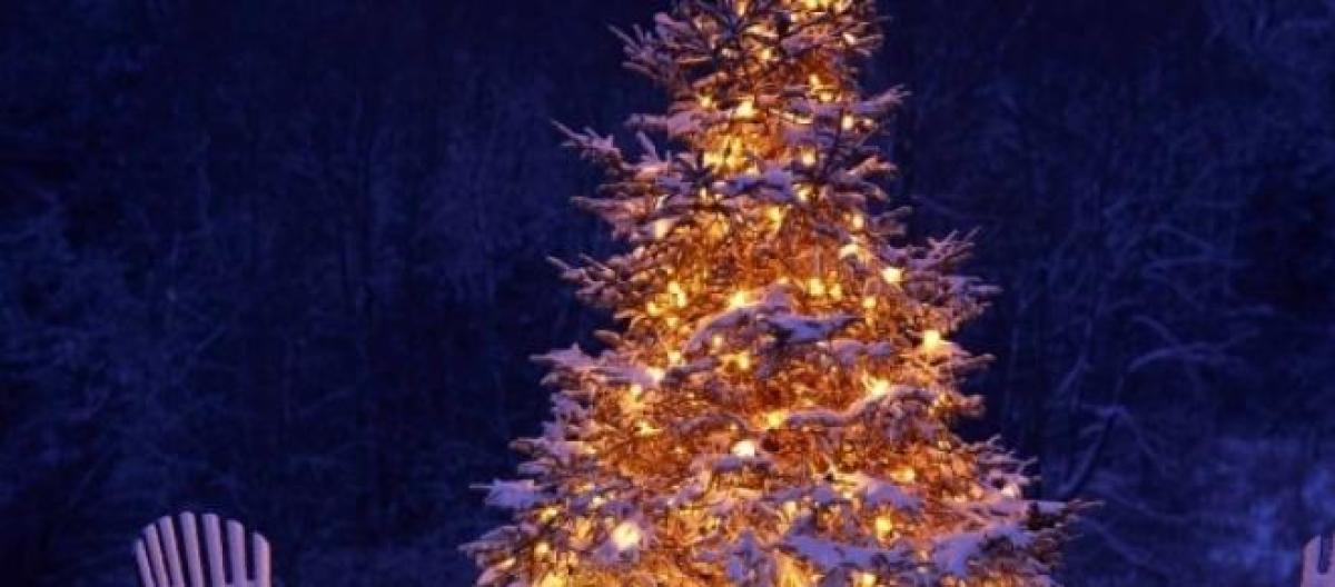Auguri Di Natale Fidanzato.Auguri Di Natale 2014 Frasi Dolci E Romantiche Poesie Rime Da