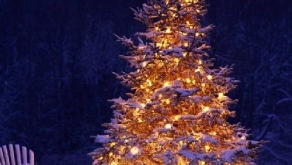 Auguri Di Natale Dolci D Amore.Auguri Di Natale 2014 Frasi Dolci E Romantiche Poesie Rime Da Dedicare Al Proprio Amore
