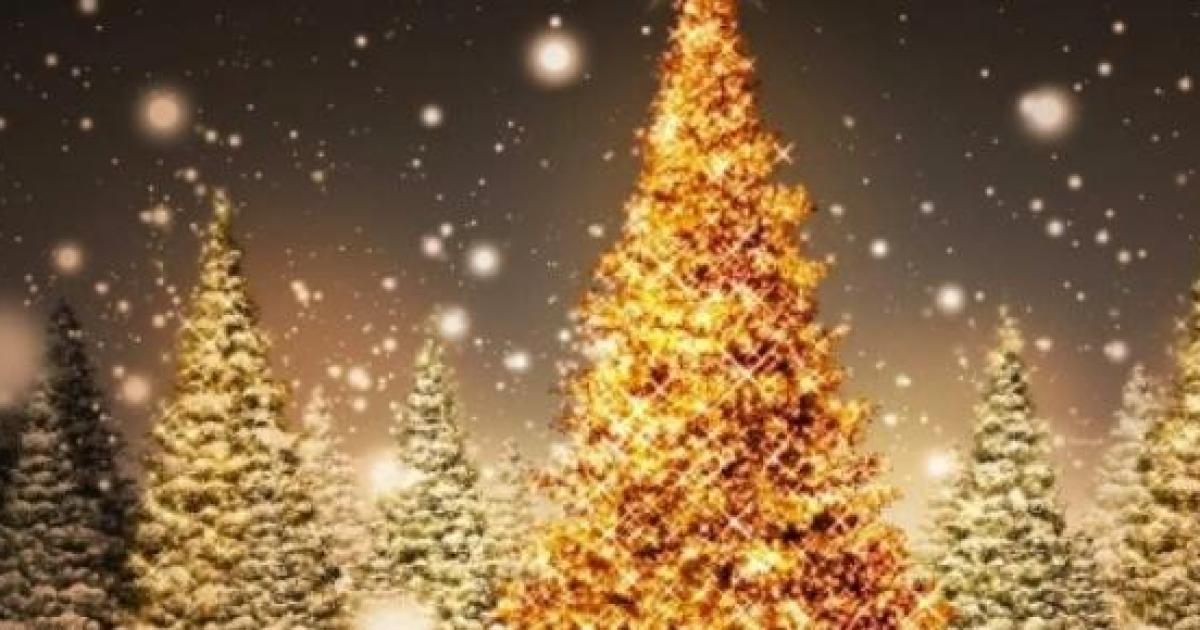Frasi Natale Per Bambini.Frasi E Auguri Di Natale 2014 Filastrocche Canzoni Rime Frasi
