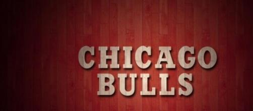 Logotipo de los Chicago Bulls