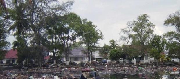 Il y a 10 ans, le tsunami détruisait tout