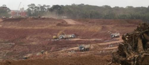 O Mundo perdeu 30% de área de floresta tropical.