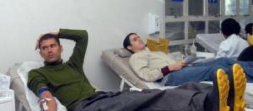 Veja como doar sangue nos Hemocentros