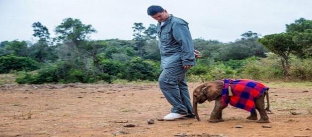 Yao Ming solidário com os animais em África.