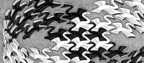 Un gruppo di cigni secondo Maurits Cornelis Escher
