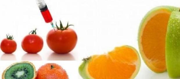 Alimentos transg nicos y sus efectos nocivos for Que son cultivos asociados