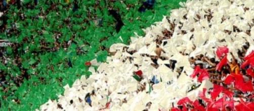 """Il """"vivo"""" tricolore dell'Italia che non si arrende"""