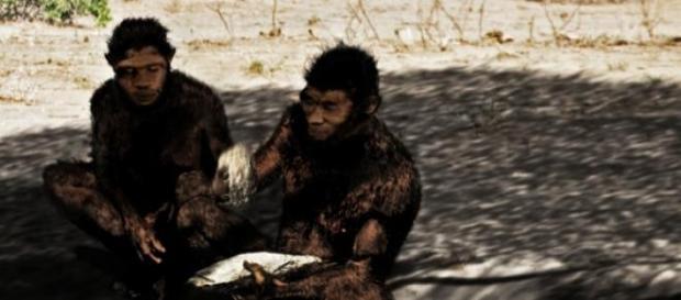 El Homo erectus fue antecesor de los neandertales