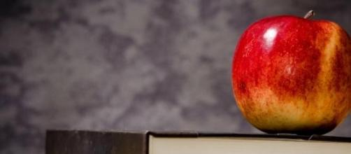 An apple on some books - old school teaching