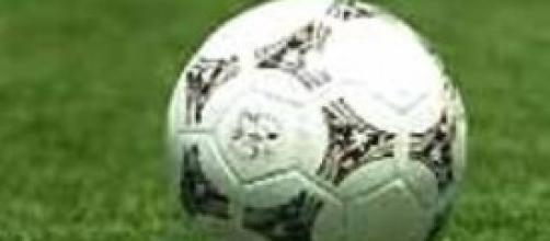Calciomercato 2014, Cannavaro al Sassuolo