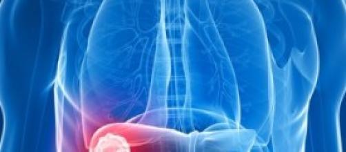 Fegato, disintossicarsi mangiando sano