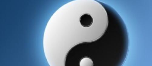 Yin Yang: quale dei due leader vi ispira di più ?