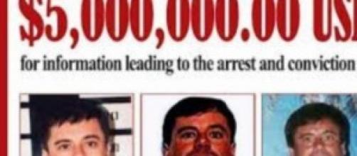 El Chapo Guzmán,  re del narcotraffico messicano