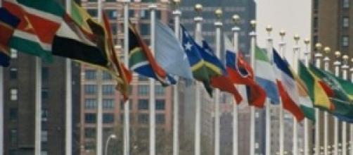 Organizzazione delle Nazioni Unite