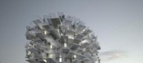L'Albero Bianco di Montpellier