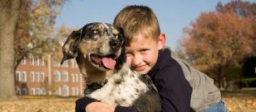 un bimbo abbraccia il suo cucciolo