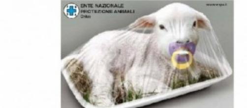 Campagna dell'ente nazionale protezione animali.