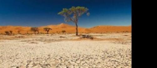 Desertificazione e cambiamenti climatici