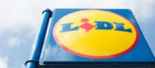 Lavoro maggio 2014: assunzioni LIDL e Calzedonia
