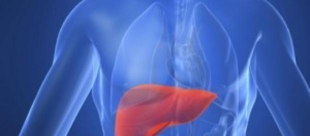 Problemi al fegato soluzione utili