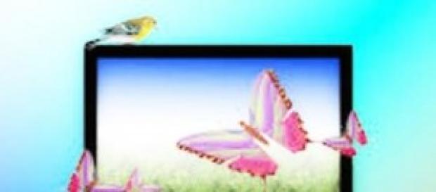 Programmi TV del 27 maggio