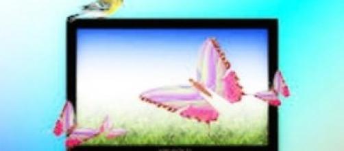 Programmi TV 29 maggio 2014