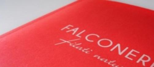 Lavoro maggio 2014: assunzioni Falconeri e Obi