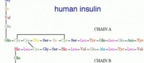 Nella foto, l'ormone insulina.