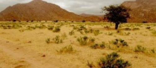 Il lavoro: un'oasi, miraggio nel deserto