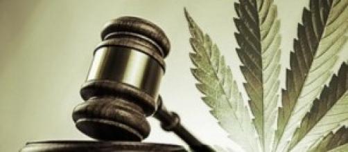 Legalizzare la cannabis a Denver, Colorado