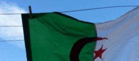 """One Two Three, Viva l'Algerie"""