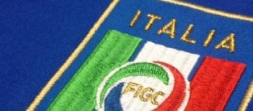 Il logo della Nazionale Italiana