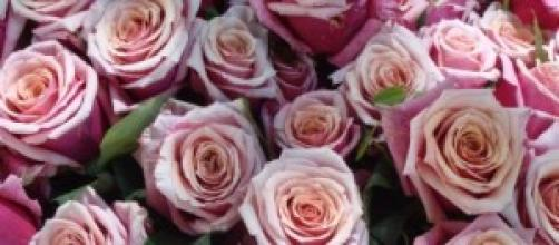 Stylish Florists From London Bridge