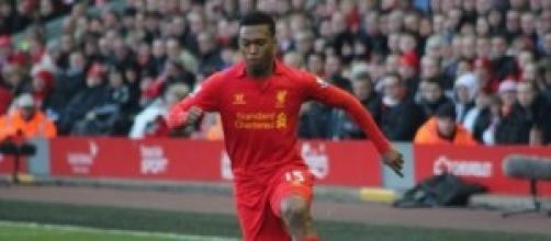 Sturridge will look to fill the void Suarez leaves