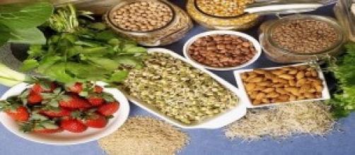 La fibra alimentaria indispensable en la dieta