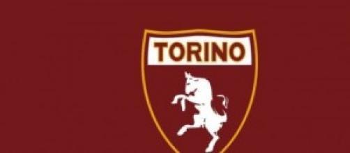 I calciatori del Torino 2014/2015.