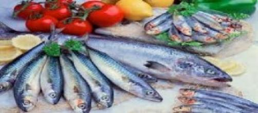 Es bueno comer pescado azul para tu cerebro.