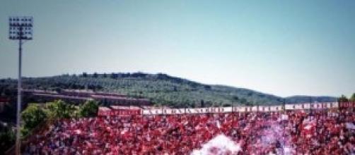 Calcio Tim Cup 2014-2015: orario Perugia-Spezia