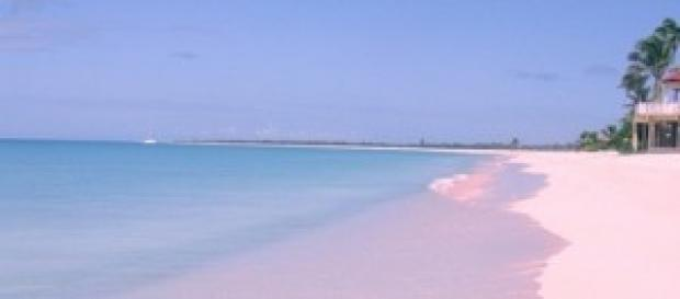 Una veduta della Pink Beach di Barbuda