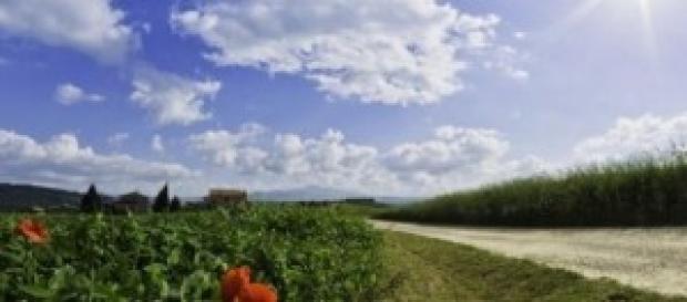 Vacanze brevi in Toscana, weekend fuori porta