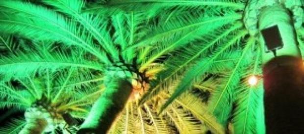 Baleari: guida turistica a Ibiza