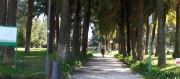 Villa Torlonia - Il viale da Via Nomentana