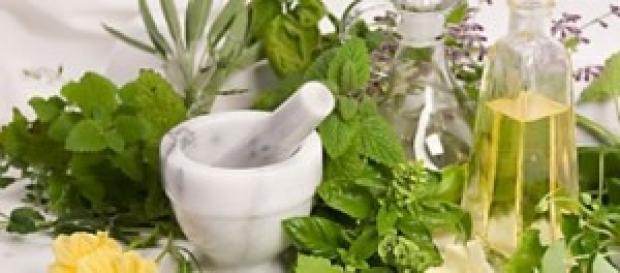 beneficios y precausiones de plantas medicinales