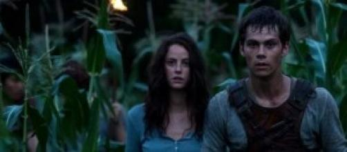 """The Maze Runner"" runs on a good storyline"
